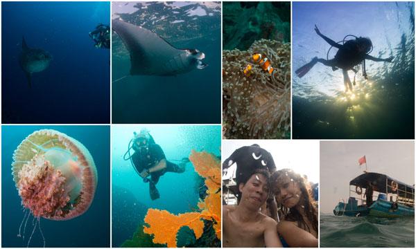 my favorite adventure is diving
