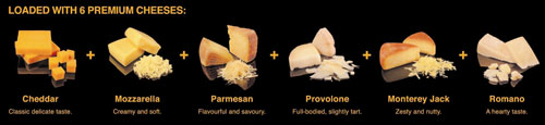 six types of premium cheese