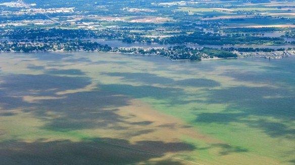 Éclosion d'algues en Ohio, sur les rives du lac Érié, en 2015, photographiée dans le cadre d'un programme de surveillance citoyen encadré par la NASA.