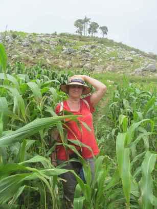 Dans les champs de maïs de Vallue.