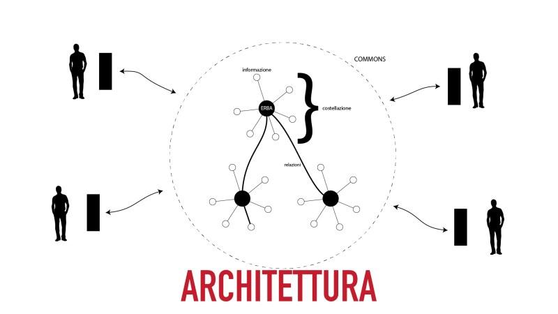 Erbe Indisciplinate, l'architettura dell'informazione