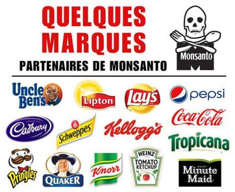 monsanto marques collabos