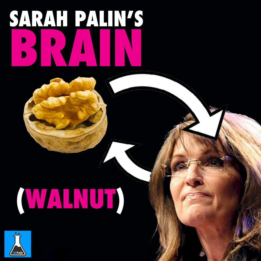 walnute
