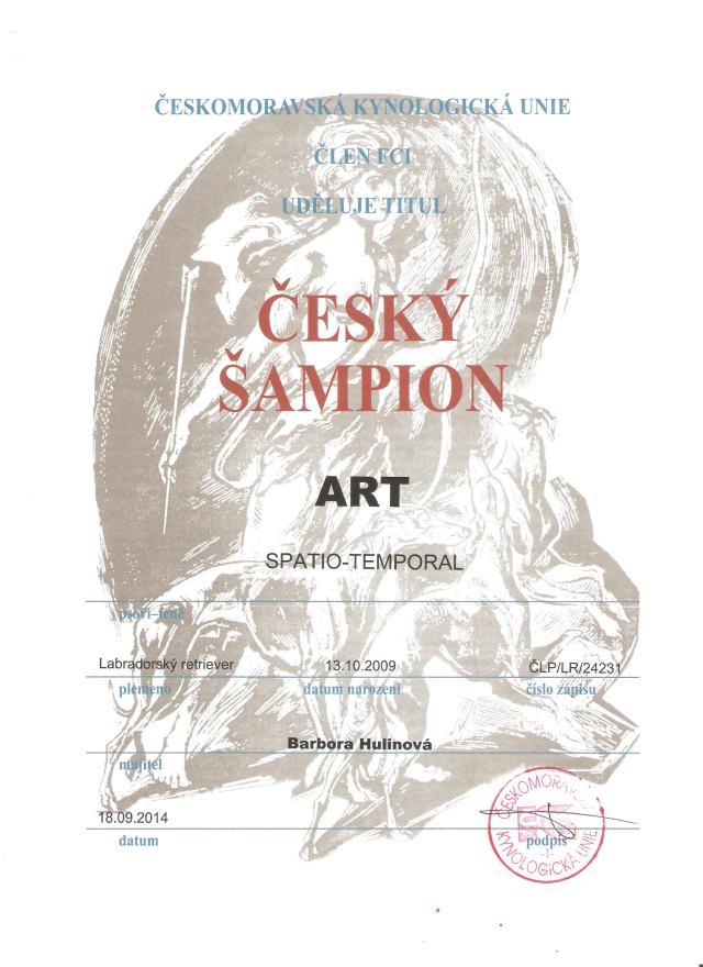 Art Spatio Temporal - český šampion