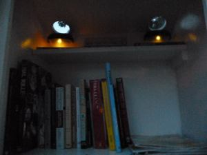 Solar lights allow browsing after dark!
