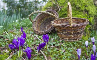 2 Day basket making course – 22-23 October