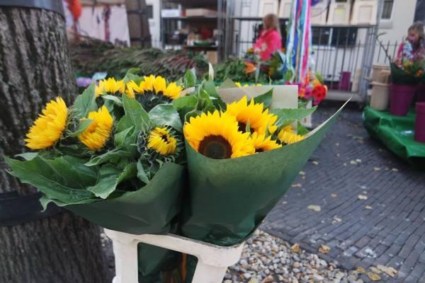 flores-utrecht