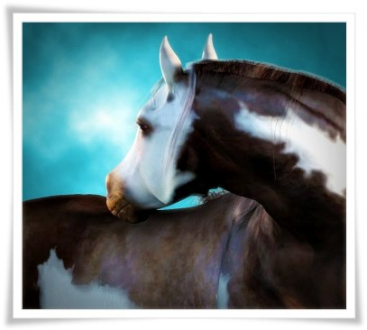 Bay Paint Millennium Horse Texture