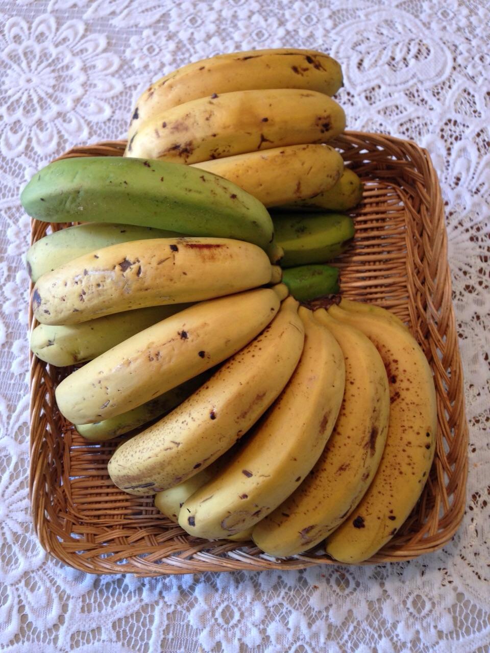 Plátanos ecológicos