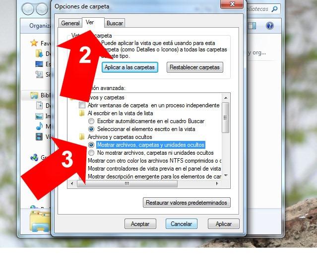 Ver archivos ocultos en Windows 7