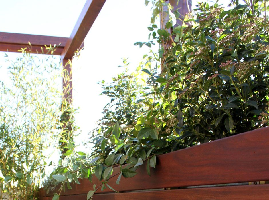 La habitaci n verde terraza junto al retiro for Definicion de terraza