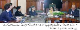 Government is not imposing new tax on motor cab rickshaw : Dr Ayesha Ghaus Pasha