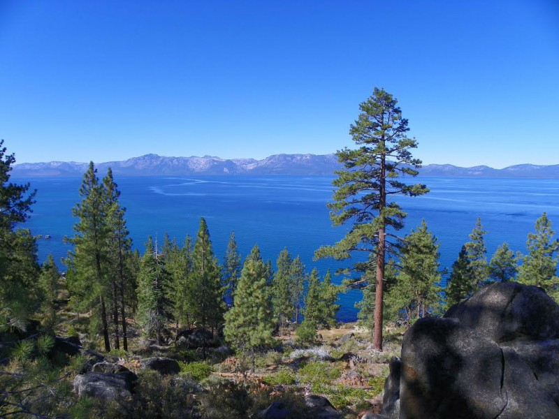 Tahoe Wedding Tips
