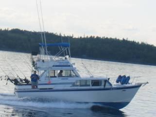 lake superior charter fishing boats Treble Hook