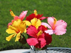 цветы своими руками из гофрированной бумаги