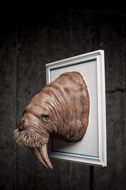 Lauren Wilde - Pacific Walrus