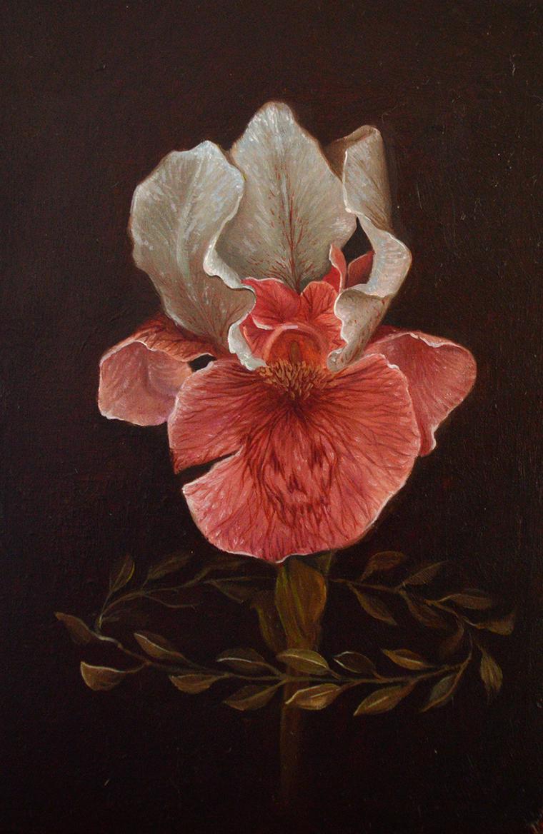 """Susanne Apgar - Mort 2Oil on panel, 3.5x5.5"""" (4.5x6.5"""" framed) $150 Sold"""