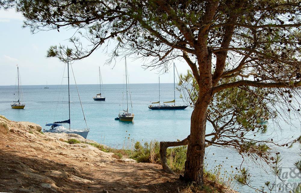 Menorca 1 164 ps