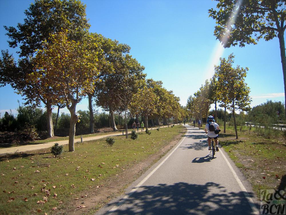 Una passejada en bici pel Parc Fluvial Riu Llobregat