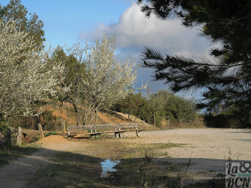 Un rincón del mirador perfecto para hacer pícnic.
