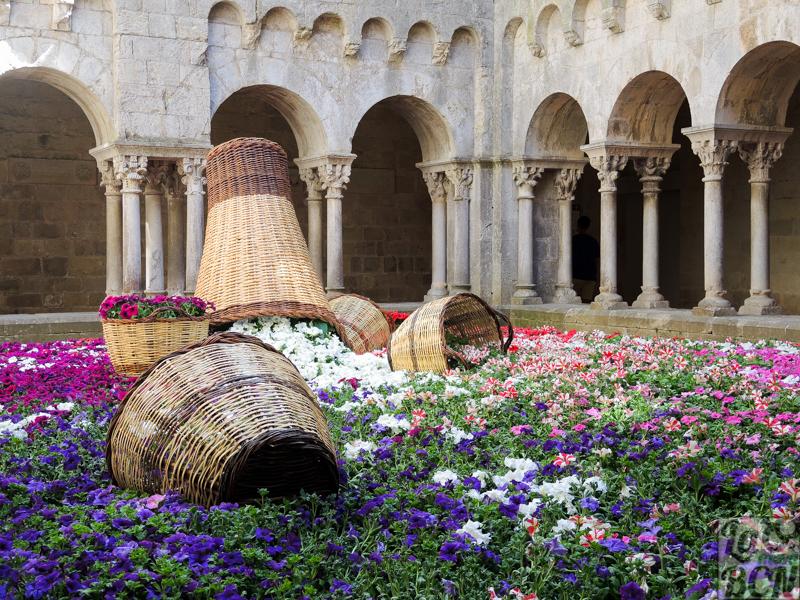 Flos a cabassos. Claustre del Monastir Sant Pere de Galligants.