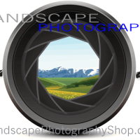 Horizon Placement in Landscape Photography
