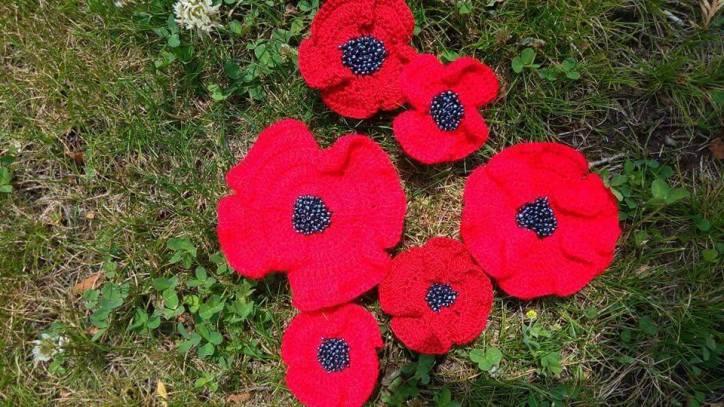 Flori de camp mac