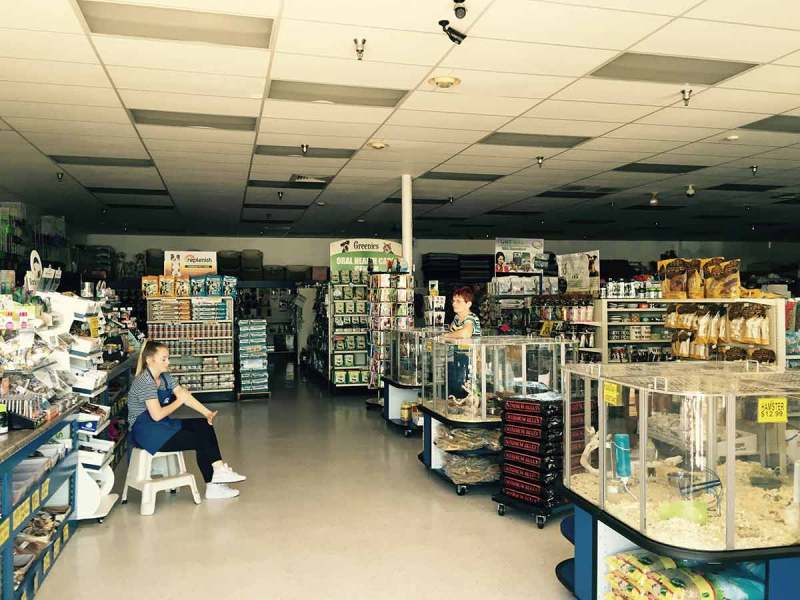 Pets Plus employees only light came through the front windows during last weekend's power outage. (Jordan Rangel/Lariat)