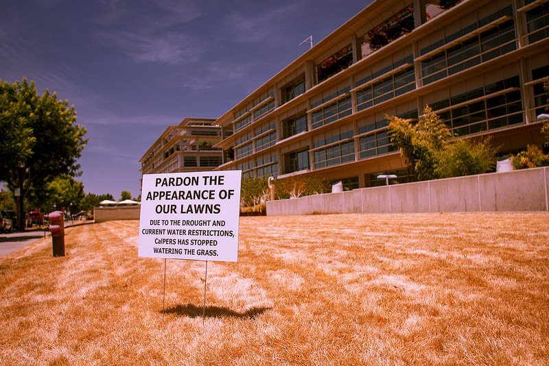 California residents have left their grass to because of the drought. (Flickr/Kevin Cortopassi/ Creative Commons license CC-BY-NC 2.0)