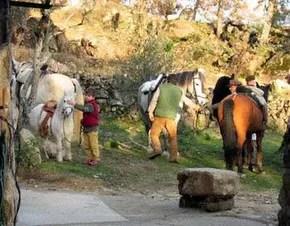 Casas_Agapito_C.T._Rural_66-2