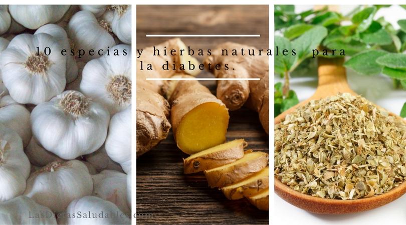 hierbas-naturales-para-la-diabetes