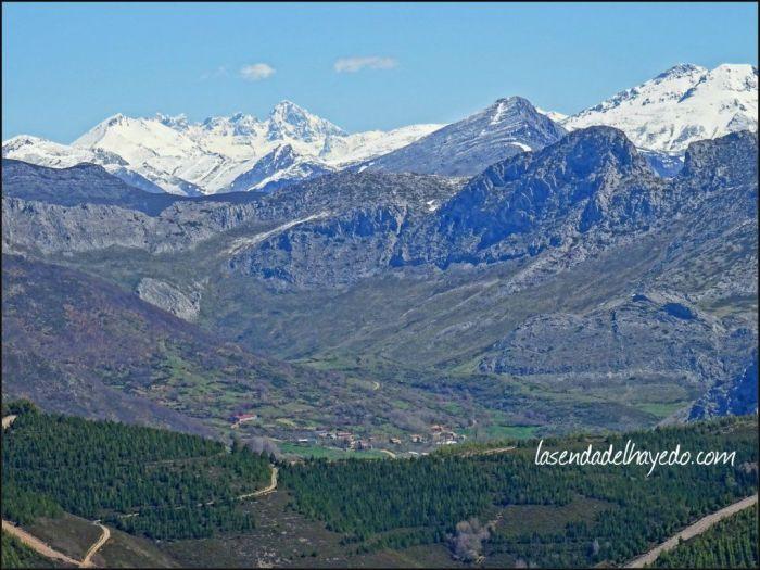 Hacia Arintero y la Forqueta. Picos de Europa como telón de fondo.
