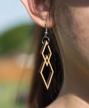 Double Gem Earrings