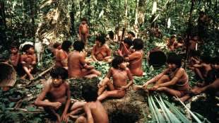Nativos yanomami. Foto: Survival International