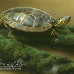 turtle, 5in x 7in, opaque and transparent watercolor with sterling silver and 24kt gold on board, ©Rebecca Latham