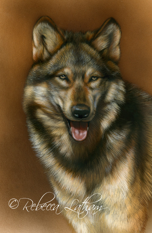 Pleasant Personality - Wolf, 5in x 7in, opaque and transparent watercolor with sterling silver on board, ©Rebecca Latham