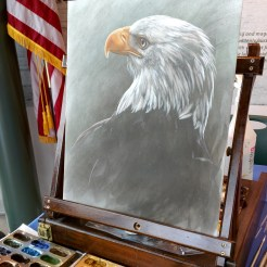 Live painting/quick draw at the National Eagle Center in Wabasha, MN for their Earth Day/Hatch Day Celebration. Progress.