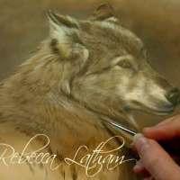 Defensive - Wolf Watercolor Miniature