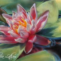 Waterlily Miniature Painting