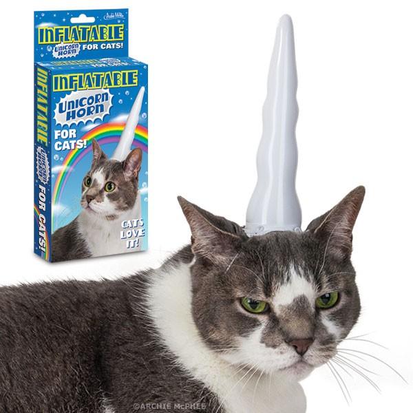 Cat in a unicorn horn