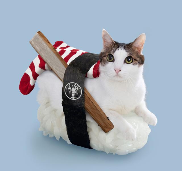 Sushi Cat Ebinosuke