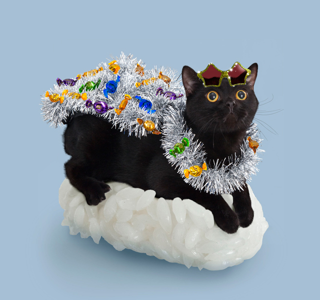 Sushi Cat Fever