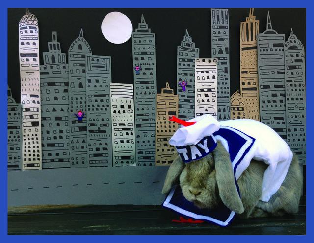 Benjamin the Bunny