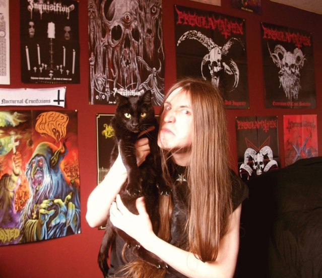 Metal Cats Red Wall