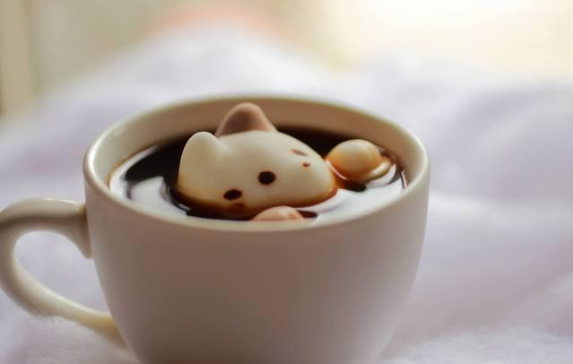 Marshmallow Cat in Cafe au Lait