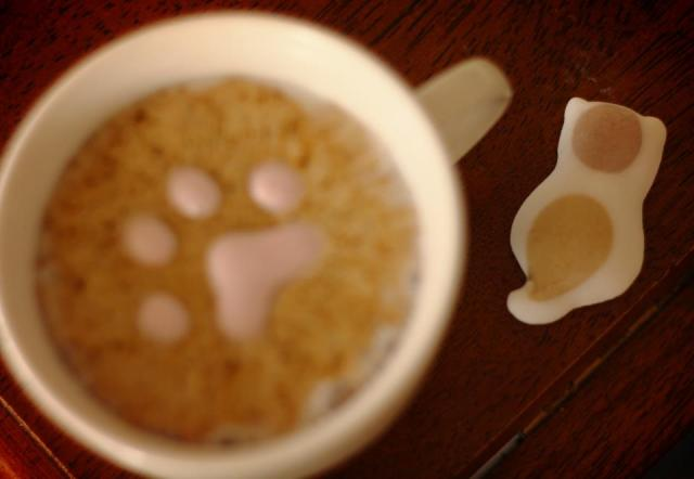 Paw Print In Coffee