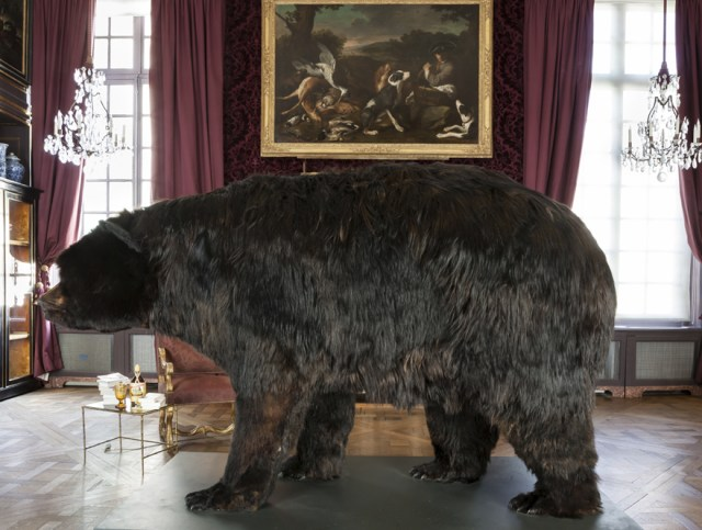 Artist Is Living Inside a Taxidermy Bear