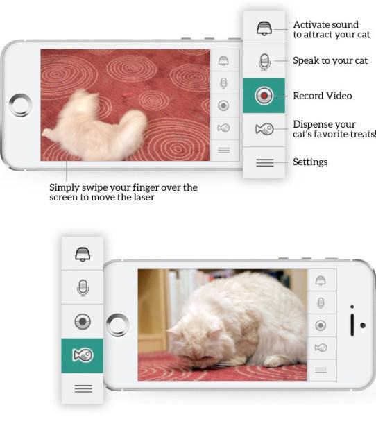 Kittyo App