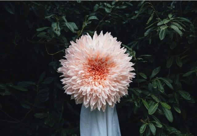 Giant Papercraft Flower Blossom Sculptures by Tiffanie Turner