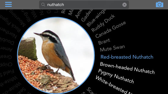 Birdsnap Birdwatching App